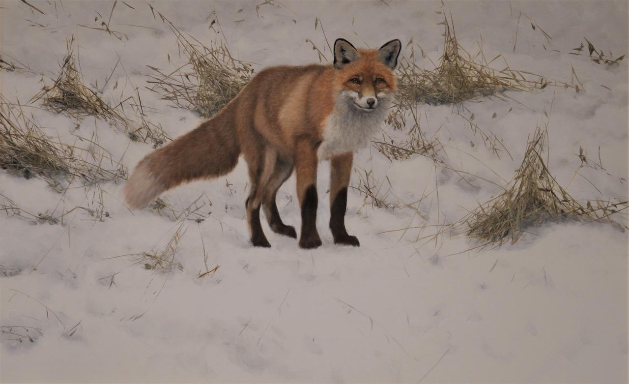 Vinterräv, olja, 98 x 148 cm